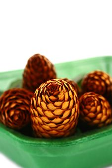 Free Wood Pine Fir Cones Royalty Free Stock Photography - 4165037