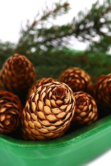Free Wood Pine Fir Cones Royalty Free Stock Photography - 4165107