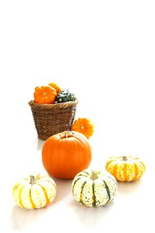 Free Autumn Harvest Stock Photo - 4165170