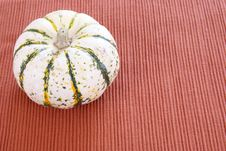 Free White Pumpkin Stock Photography - 4165202
