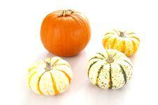 Free Pumpkins Stock Photography - 4165272