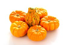 Free Pumpkins And Gourd Stock Photos - 4165293