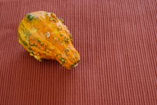 Free Orange Gourd Royalty Free Stock Image - 4165306