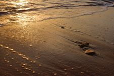 Free Tropical Sundown Royalty Free Stock Photography - 4168587