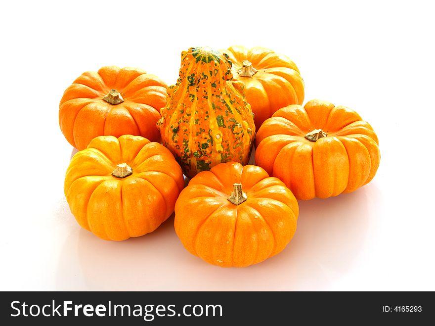 Pumpkins and Gourd