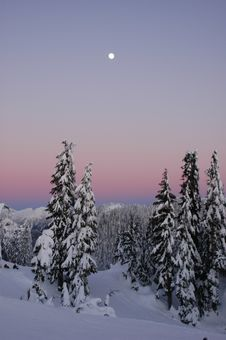 Free Winter Sunset Royalty Free Stock Images - 4171369