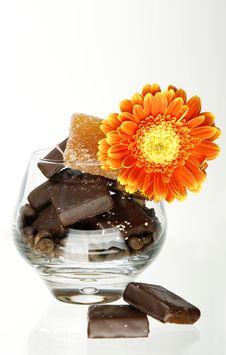 Chocolate Sunny Flower Stock Photos