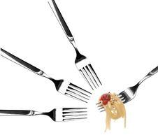 Free Spaghetti Pasta Twirled On A Fork Royalty Free Stock Photo - 4173195