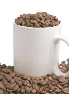 Free Beans Of Coffee And Cup Royalty Free Stock Images - 4176229
