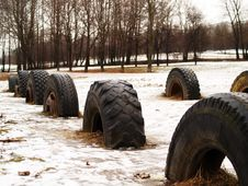 Free Tire Halves Royalty Free Stock Images - 4179429