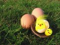 Free Easter Still Life Royalty Free Stock Photo - 4183595