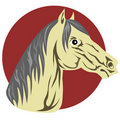 Free Arabian Horse Profile Royalty Free Stock Image - 4189206
