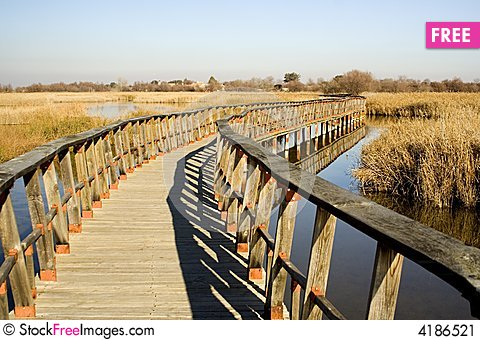 Free A Wood Path Stock Image - 4186521
