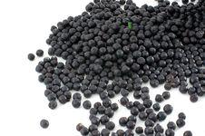 Blackberry Royalty Free Stock Image