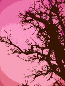 Free Rose Pink Tree Royalty Free Stock Photos - 4183448