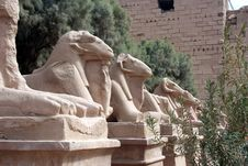Avenue Of The Sphinx At Karnak Temple Stock Photos