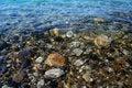 Free Dead Sea Coast Stock Photography - 4198152