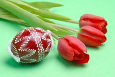 Free Painted Easter Egg And Red Tulips Stock Images - 4192404