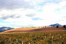 Farmaland In Autumn Italy Royalty Free Stock Image