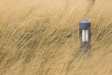 Free Garden Light In A Grass Field Royalty Free Stock Image - 4193186