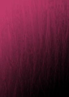 Free Wet Colour Stock Photo - 4193550