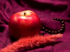Free Apple Ikebana Necklace Stock Photos - 4193933