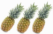 Free Pineapples Stock Image - 4194281