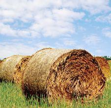 Free Hay Bales Royalty Free Stock Photo - 4196805