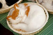 Free Kitten In Basket Stock Image - 4197041