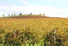 Italy, Autumn Country Farmaland Stock Photo