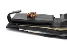 Frog On The Wallet Stock Photography