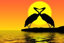 Free Herons In Love And Sunset Stock Photo - 4199100