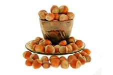Free Nuts A Filbert In A Cup Royalty Free Stock Image - 4199836