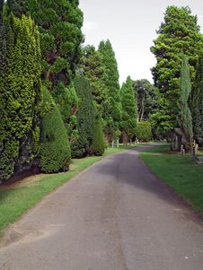 Free Cemetary Path 4 Stock Photos - 420803