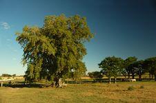 Free Farm Field (2) Royalty Free Stock Photos - 421968