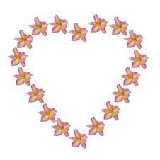 Free Flower Heart Royalty Free Stock Photos - 426568