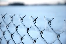 Free Fence Royalty Free Stock Photography - 428857