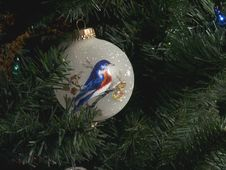 Free Tree Ornament Royalty Free Stock Photos - 429548