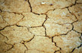 Free Dry Crackled Ground Texture Stock Photos - 4201583