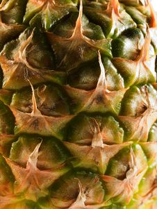 Free Pineapple Texture Royalty Free Stock Photography - 4201087
