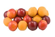 Apricot, Plum, Nectarine Royalty Free Stock Photography