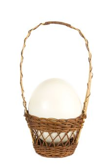 Free Ostrich Egg Royalty Free Stock Image - 4203596