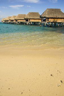 Sandy Tropical Beach 3 Royalty Free Stock Image