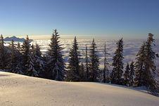 Free Swiss Alps_6 Royalty Free Stock Photos - 4204798