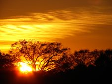Sunset In Jungles Royalty Free Stock Photography