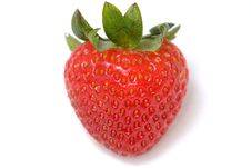 Free Strawberry Stock Image - 4207981