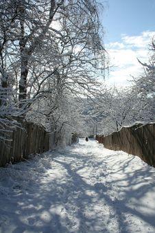 Frozen Winter Road Stock Photos