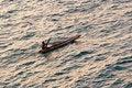Free Indian Fisherman Royalty Free Stock Photo - 4217565