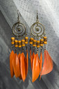 Free Orange Earrings Stock Photography - 4219952