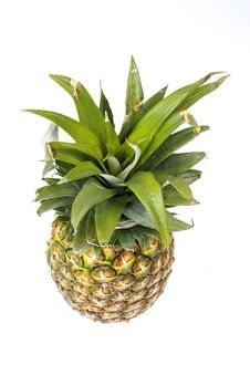 Free Pineapple From Above Stock Photography - 4212812